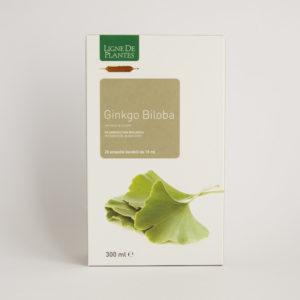 Ginko Biloba Integratore Alimentare